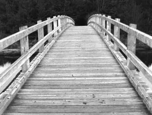 Palestra para grupos: Pontes e não barreiras